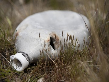 4. Argentine soldier's water bottle, Wireless Ridge, 2006
