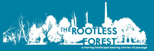 The Rootless Forest, Birmingham