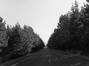 Robert Adams: A Road Through Shore Pine  Fraenkel Gallery, San Francisco