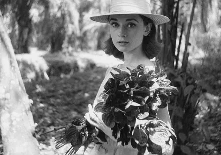 Audrey Hepburn: Portraits of an Icon, The National Portrait Gallery, London