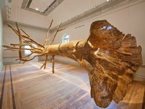 Wonder, Renwick Gallery, Washington D.C.