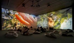 Pipilotti Rist: Retrospective and New Works, Kunsthaus