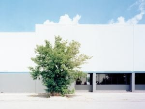 J Bennett Fitts, One Tree O ce. From the series Industrial Landscap[ing].